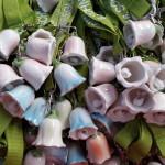 rosa und hellblaue Glocken